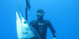 Francisco Loffredi huge marlin
